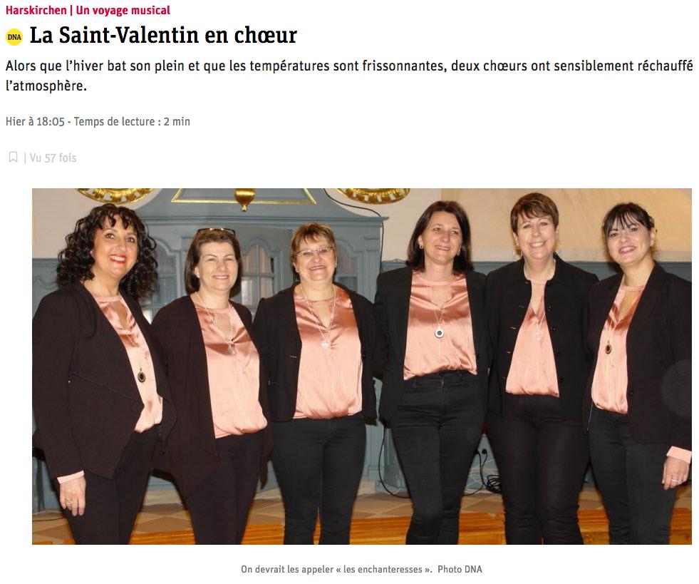 Concert de la Saint Valentin : article DNA 1